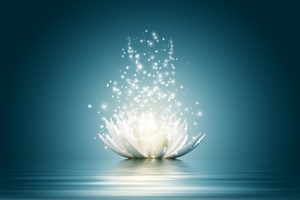 Magic Lotus flower