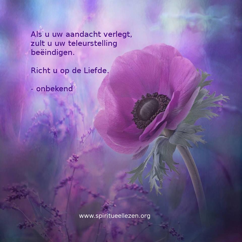 Q Richt U Op De Liefde Spiritueel Lezen
