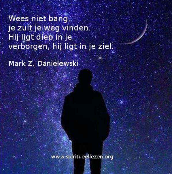 Q: 2016 06 13: Mark Z: Danielewski - Je zult je weg vinden